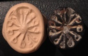 Ancient Coins - An Iron Age IIa Scaraboid Black Stone Seal, 10th-9th century BCE