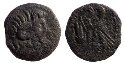 Ancient Coins - The Ptolemies, Cleopatra VII and Caesarion, 47-30, Æ 23 Very Rare.