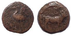 Ancient Coins - Egypt. Alexandria. Caligula AD 37-41. Dichalkon Æ 15. Rare.