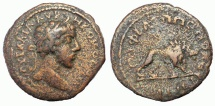 Ancient Coins - Thrace, Philippopolis: Commodus, 180-192 AD. Æ 20 mm.  Lion Reverse