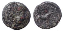 Ancient Coins - Mysia, Parium Hadrian. Ae 17. Very Rare.
