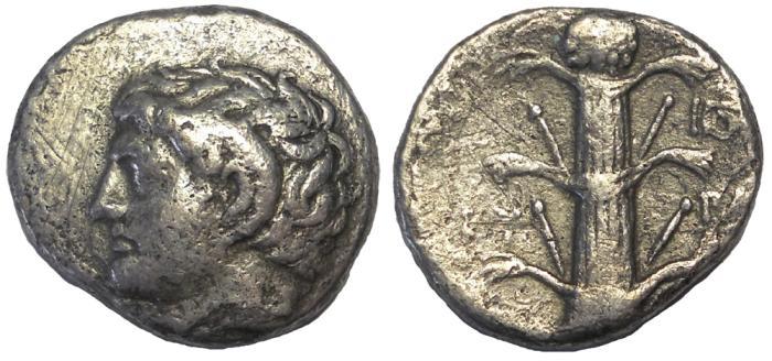Ancient Coins - Kyrene, ca. 275 BC. AR Didrachm.  Rare Silphium Plant Reverse