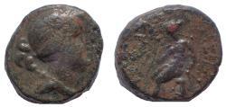 Ancient Coins - Seleukos III Keraunos AE 16