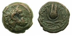 Ancient Coins - PTOLEMAIC EMPIRE.CYRENAICA.CYRENE.Late 2nd to early 1st cent BC.AE.14mm.Head of Zeus Ammon~#~.Headdress of Isis.