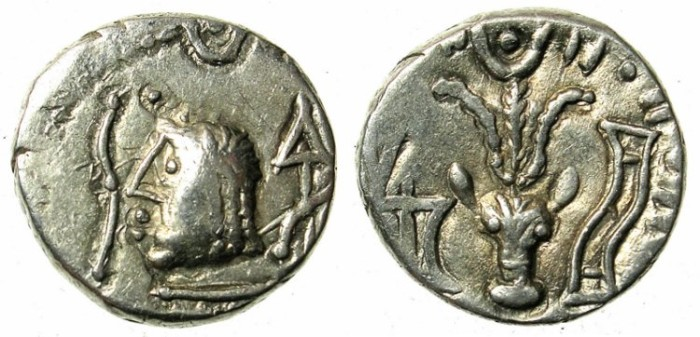 Ancient Coins -    ARABIA FELIX.Himyarites.Anonymous 1st cent BC.AR.Denarius.Male head left / Bucranium