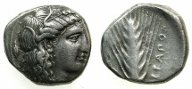 Ancient Coins - LUCANIA.METAPONTION.AR.Nomos ( didrachm ).circa  400-340BC.