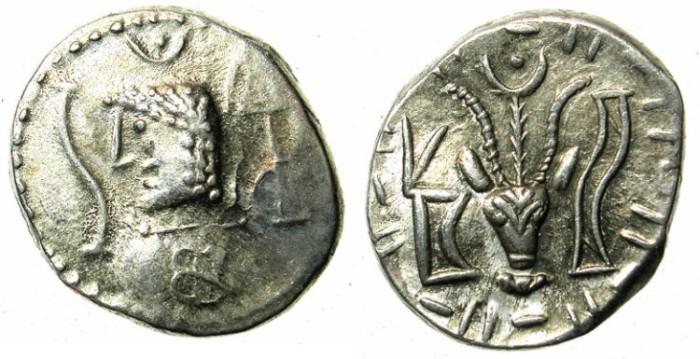 Ancient Coins -    ARABIA FELIX.Himyarites.Anonymous 1st cent BC.AR.Denarius.Male head left / Bucranium