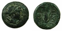 Ancient Coins - LUCANIA.PAESTUM.2nd Punic War 218-201 BC.AE.Uncia