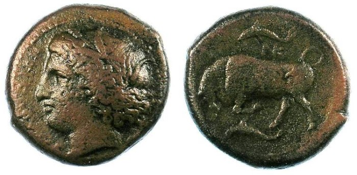 Ancient Coins - SICILY.Agathokles 317-289 BC.AE.21mm.Kore-Persephone.Rev.Butting bull.