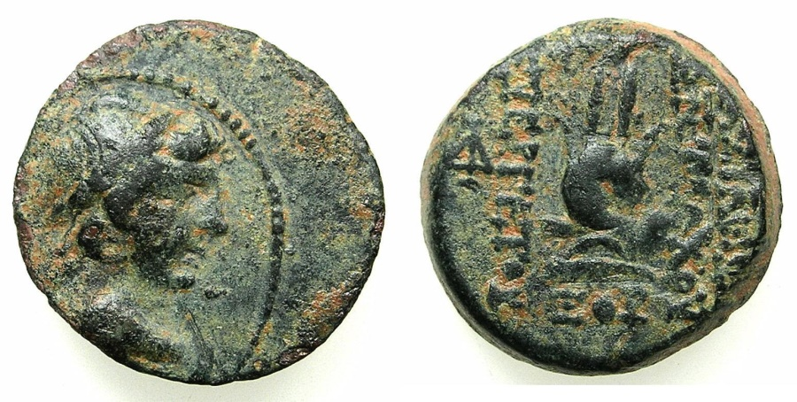 Ancient Coins - SELEUCID EMPIRE.Antiochus VII Euergetes-Sidetes 138-129 BC.AE.18.struck 136/5 BC. Mint of ANTIOCH.