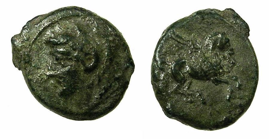 Ancient Coins - SICILY.CEPHALOEDIUM.Circa 254-212 BC.AE.13.8mm. Young Herakles left. Pegasus. RARE.