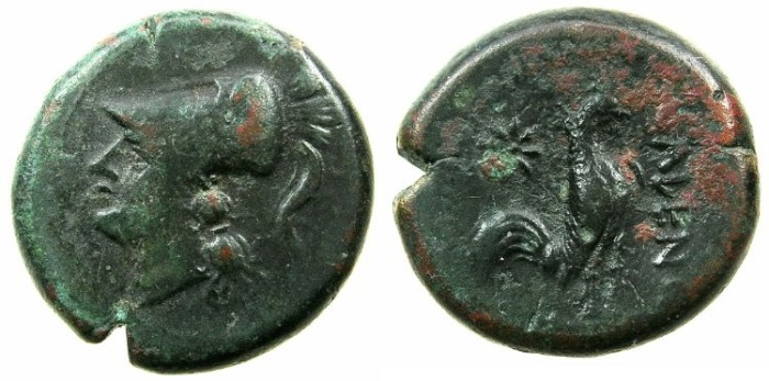 Ancient Coins - CAMPANIA.CALES.after 268 BC.AE.19.6mm.~~~Head of Athena.~#~.Cock.