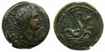 Ancient Coins - EGYPT.ALEXANDRIA.Domitian AD 81-96.AE.Diobol, struck AD 91/92.~#~.The snake Agathodaemon.