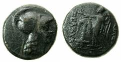 Ancient Coins - SELEUCID EMPIRE.Seleucus II 246-226 BC.AE.18.7mm. Mint of ANTIOCH.Reverse.Anchor.