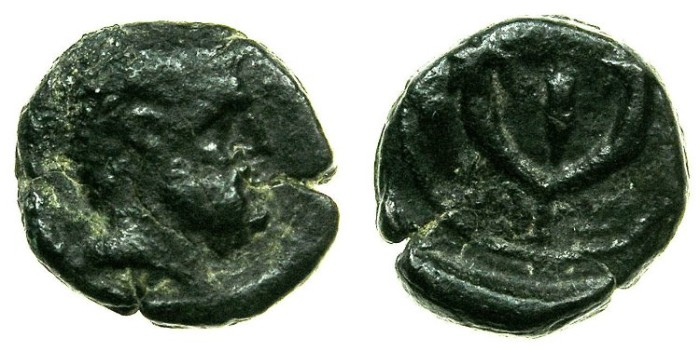 Ancient Coins - JUDAEA.ASCALON.Time of Augustus? 30BC-AD14.AE.13mm.****Rare early issue, 5 examples recorded in RPC I.