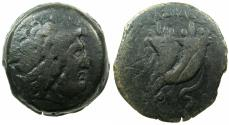 Ancient Coins - PTOLEMAIC EMPIRE.CYRENCE.CYRENAICA.Ptolemy VIII Euergetes II 146-116 BC.AE.46.2mm.~#~Double cornocopiae. ****Extremley Rare coin ****