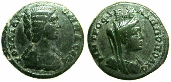 Ancient Coins - THRACE.PHILIPPOPOLIS.Julia Domna AD 196-211.AE.23.~~~Vieled female( Tyche?) wearing Camp-gate crown.