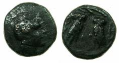 Ancient Coins - ATTIKA.ATHENS.3rd cent BC.AE.14mm. Reverse.Two Owls.