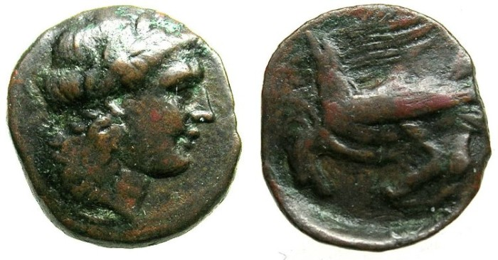 Ancient Coins - SICILY.AGRIGENTUM.Circa 279-241 BC.AE.19.Apollo.Two Eagles.