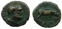 Ancient Coins - ROMAN.Trajan AD 98-117.AE.Quadrans struck circa 98-102.Mint of ROME.~~~Herakles .~#~.Boar