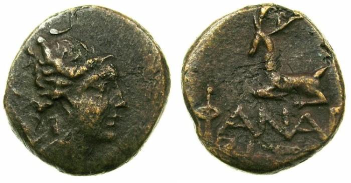 Ancient Coins - BOSPORUS.PHANAGORIA.Circa late 2nd cent.BC.AE.20mm.