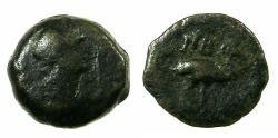 Ancient Coins - EGYPT.ALEXANDRIA.Trajan AD 98-117. Anepigraphic issue.AE.Dichalkon.struck AD 108/9. Reverse.Ibis.