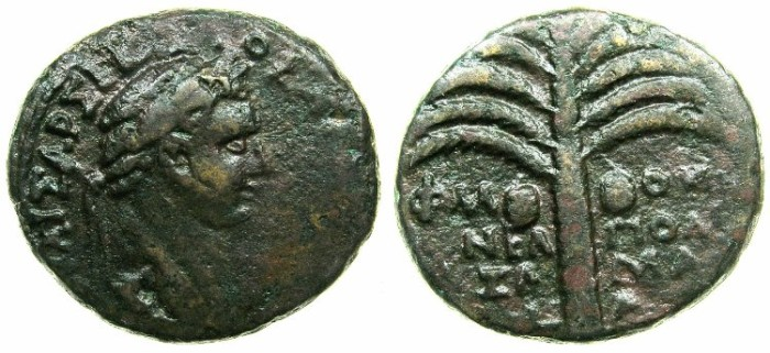 Ancient Coins - JUDAEA.NEAPOLIS.Domitian AD 81-96.AE.22mm, struck AD 82/83.~#~Palm tree.