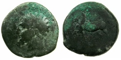 Ancient Coins - NUMIDIA.Massinissa circa 203-148 BC.AE.Unit.