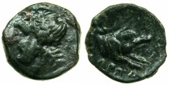 Ancient Coins - APULIA.ARPI.circa 3rd cent.BC.AE.14.7mm.Zeus.~#~.forepart of Boar.