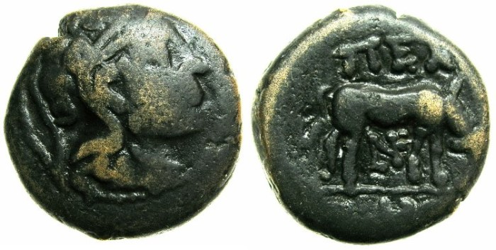 Ancient Coins - MACEDON.PELLA.Circa 187-31 BC.AE.18mm.~~~~ATHENA PARTHENOS.