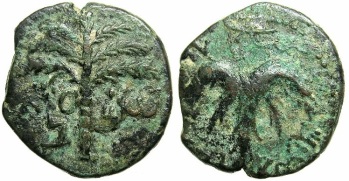 Ancient Coins - JUDAEA.Bar Kochba revolt AD 132-135.AE.27.Palm with seven braches.Vine leaf.