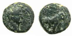Ancient Coins - JUDAEA.SAMARIA.Caesarea Maritima.Trajan AD 98-117.AE.11.2mm. Reverse.Lion.