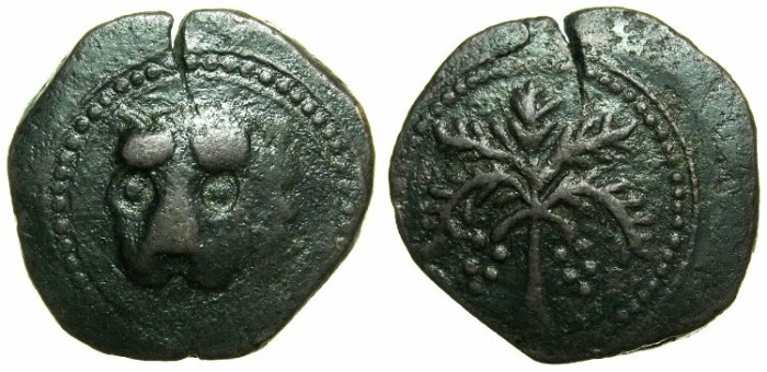 Ancient Coins - ITALY.SICILY.William II AD 1166-1183.AE.Trifollaro.Anonymous issue.~~~Lion mask.~#~.Palm branch with fruit.