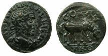 Ancient Coins - TROAS.ALEXANDRIA.Gallienus AD253-268.AE.21mm. Rev.Horse.