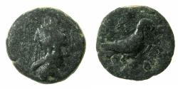 Ancient Coins - Artaxiads of ARMENIA.Tigranes IV 8-5 BC.AE.14.5mm. Reverse. Eagle standing right. ***Rare varient***