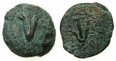 Ancient Coins - SELEUKID KINGDOM.Antiochus VII Eugertes II 138-129 BC.AE.Prutah.Mint of JERUSALEM.struck by John Kyrkanos ( Yehohanan )