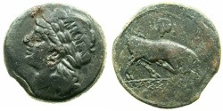 Ancient Coins - GAUL.MASSALIA.Circa 240-218 BC.AE.23mm.~#~.Laurate head of Apollo.~#~.Butting bull, bunch of grapes above.