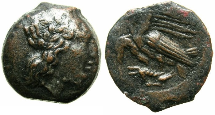 Ancient Coins - SICILY.AGRIGENTUM.The Tyrant Phintias 287-279 BC.AE.20.~~~Laurate Apollo.~#~Two eagles on hare.