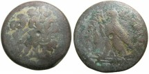 Ancient Coins - Ptolemaic Empire.CYPRUS.Ptolemy IV Philopator 221-205 BC.AE.Hemi drachm.Mint of PAPHOS?