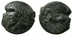 Ancient Coins - NUMIDIA.Massinissa or Micipsa circa 203-148-118 BC.AE.