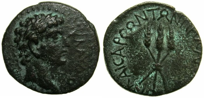 Ancient Coins - CILICIA.ANAZARBUS.Claudius AD 41-54.AE.16.8mm.~~~Head of Claudius.~#~.Three bouund ears of wheat.+++ONLY FIVE EXAMPLES RECORDED IN RPC VOL I+++