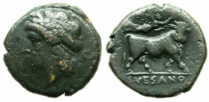 Ancient Coins - CAMPANIA.SUESSA AURUNCA.Circa 268-240 BC.AE.21.Apollo.Man headed bull