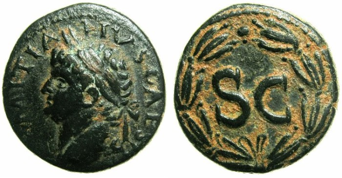 Ancient Coins - SYRIA.SELEUCIA AND PIERIA.Antioch ad Orontem.Domitian AD 81-96.AE 22.