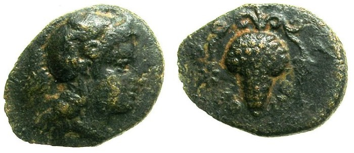 Ancient Coins - CILICIA.SOLOI.3rd Cent BC.AE.16.Athena.Bunch of grapes.