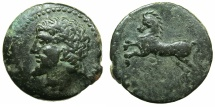Ancient Coins - NUMIDIA.Massinissa or Micipsa circa 203-148-118 BC.AE.25.9mm