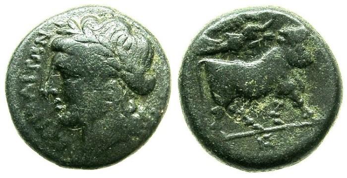 Ancient Coins - CAMPANIA.NEAPOLIS.Circa 270-240 BC.AE.17.Apollo.Man-headed bull.