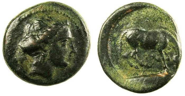 Ancient Coins - THESSALY.LARISSA.C.400-344 BC.AE.17.Nymph Larissa.Rev.Horse.