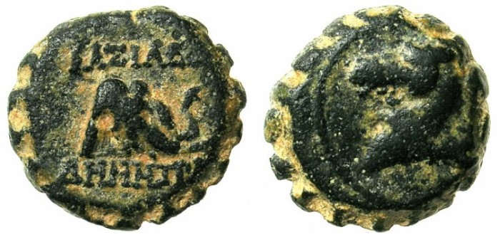 Ancient Coins - SYRIA.ANTIOCH.Demetrius I 1st reign 162-150 BC.AE.15.Horses head.Elephants head.