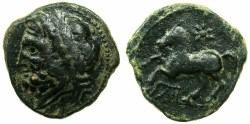 Ancient Coins - APULIA.ARPI.circa 3rd cent BC.AE.17.6mm. Zeus laurate.~#~ Prancing horse, star above.