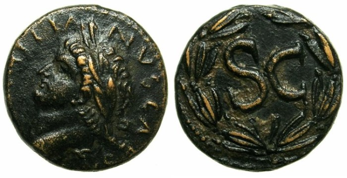 Ancient Coins - SYRIA.ANTIOCH.Domitian AD 81-96.AE.20.